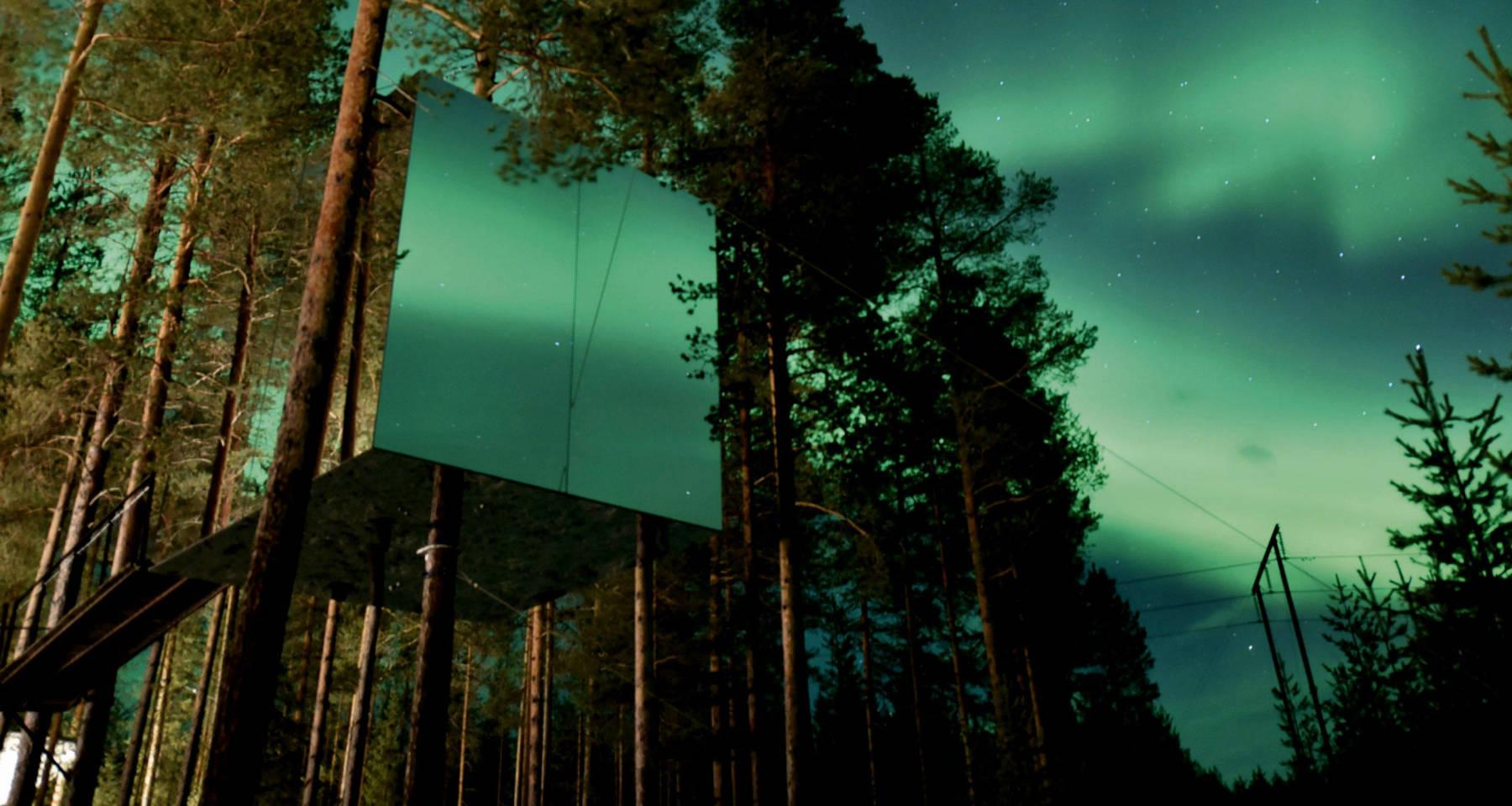 Treehotelse Home